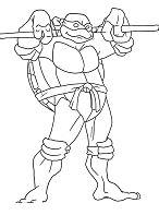 Superhero Donatello