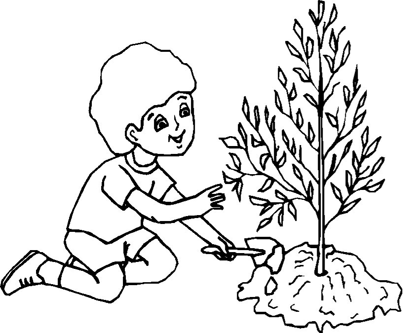 The boy is planting a tree Coloring Page