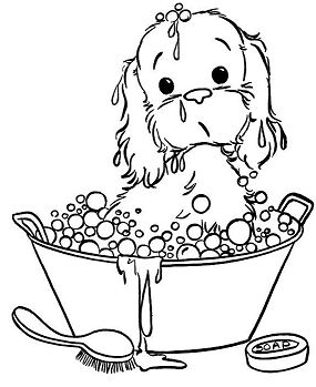 The Puppy Taking A Bubble Bath Puppy