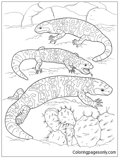 Three Gila Monsters In A Desert Coloring Page