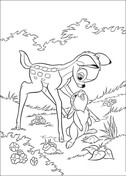 Thumper Looks At Bambi  from Bambi Coloring Page