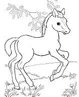 Trend Horse