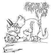 Triceratops Dinosaur 6