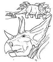 Triceratops Dinosaur 7