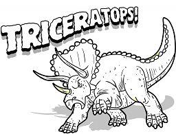 Triceratops Dinosaur 8