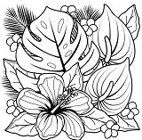 Tropical Plants And Hibiscus Flowers Coloring Page