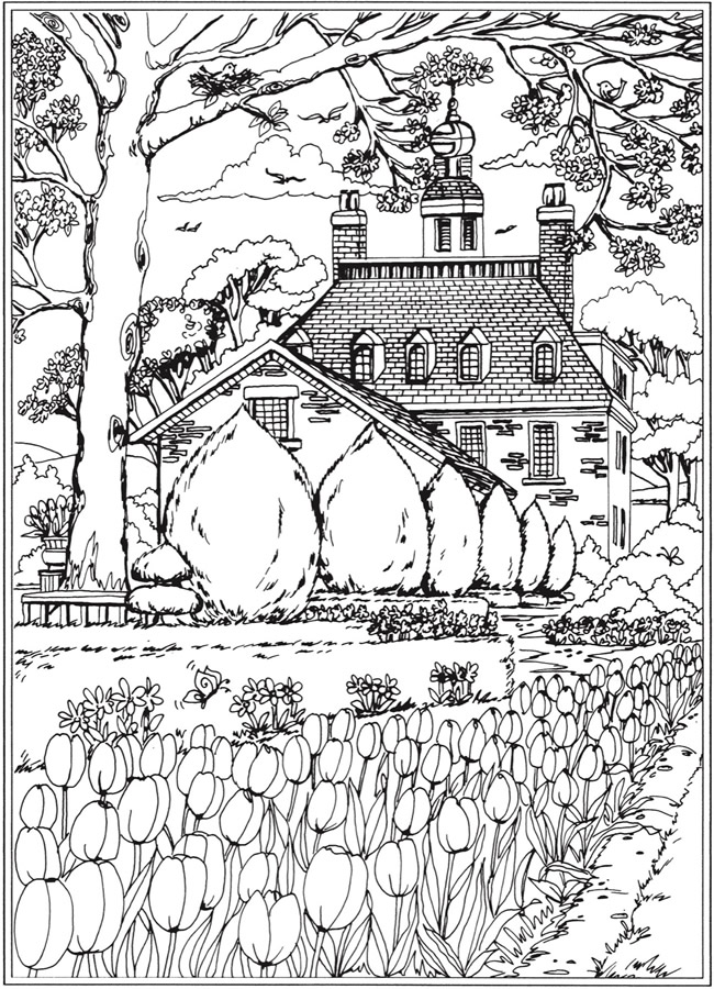 Tulips in Spring Coloring Page