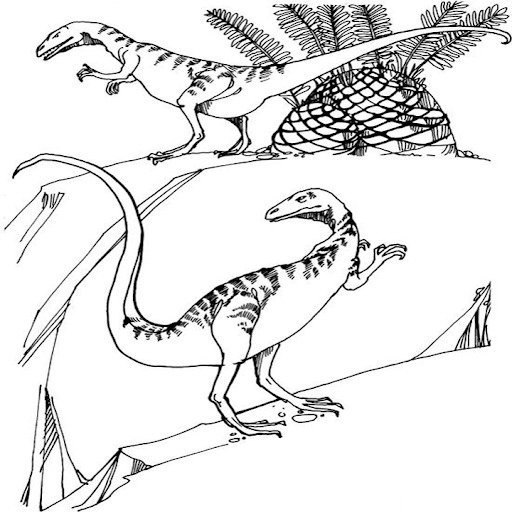 Two Allosaurus Dinosaurus Coloring Page