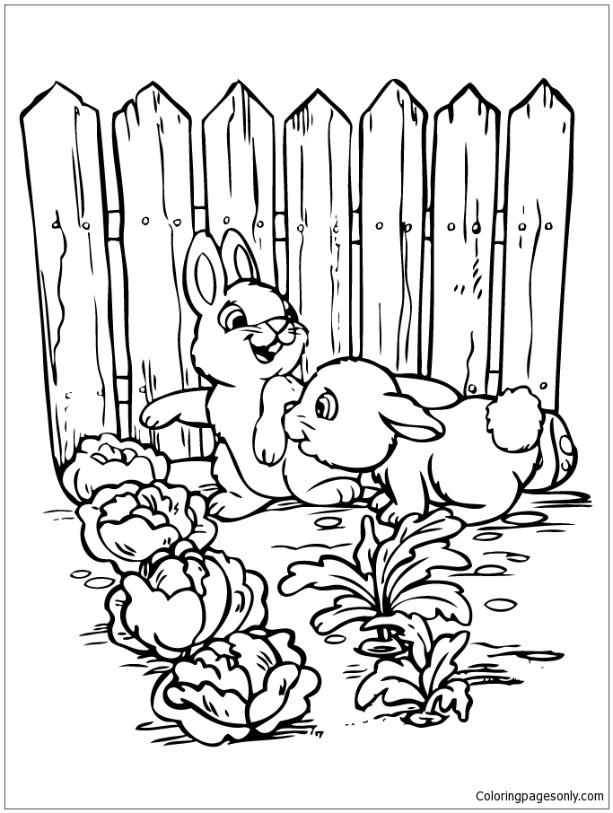 Two Bunnies Playing In The Gardens Coloring Page