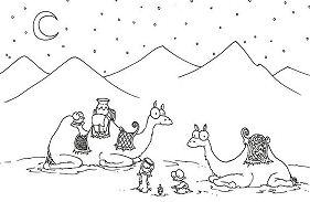 Two Camel In The Desert