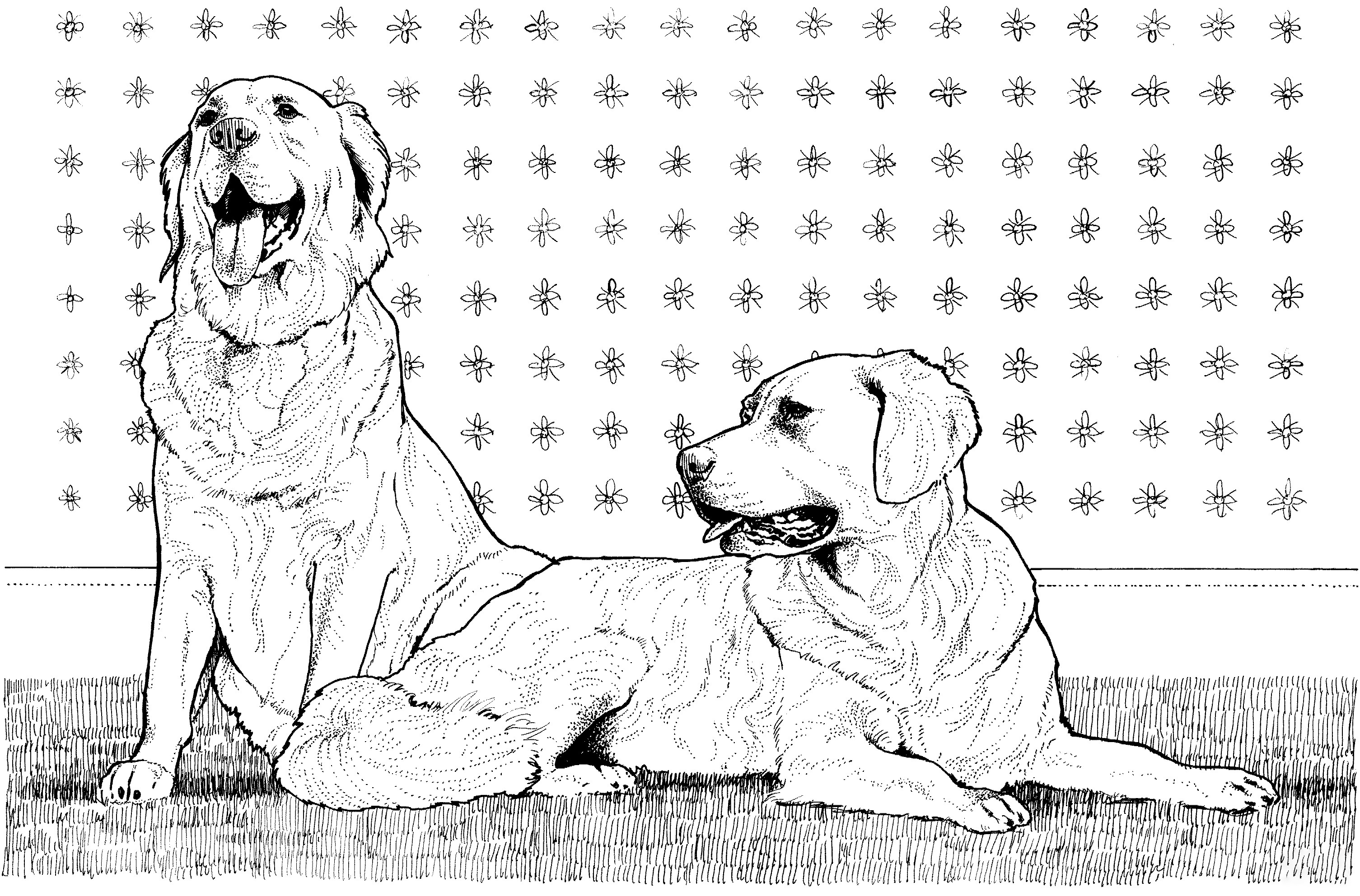 Two Golden Retrievers Coloring Page