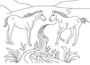 Two Horses Cute