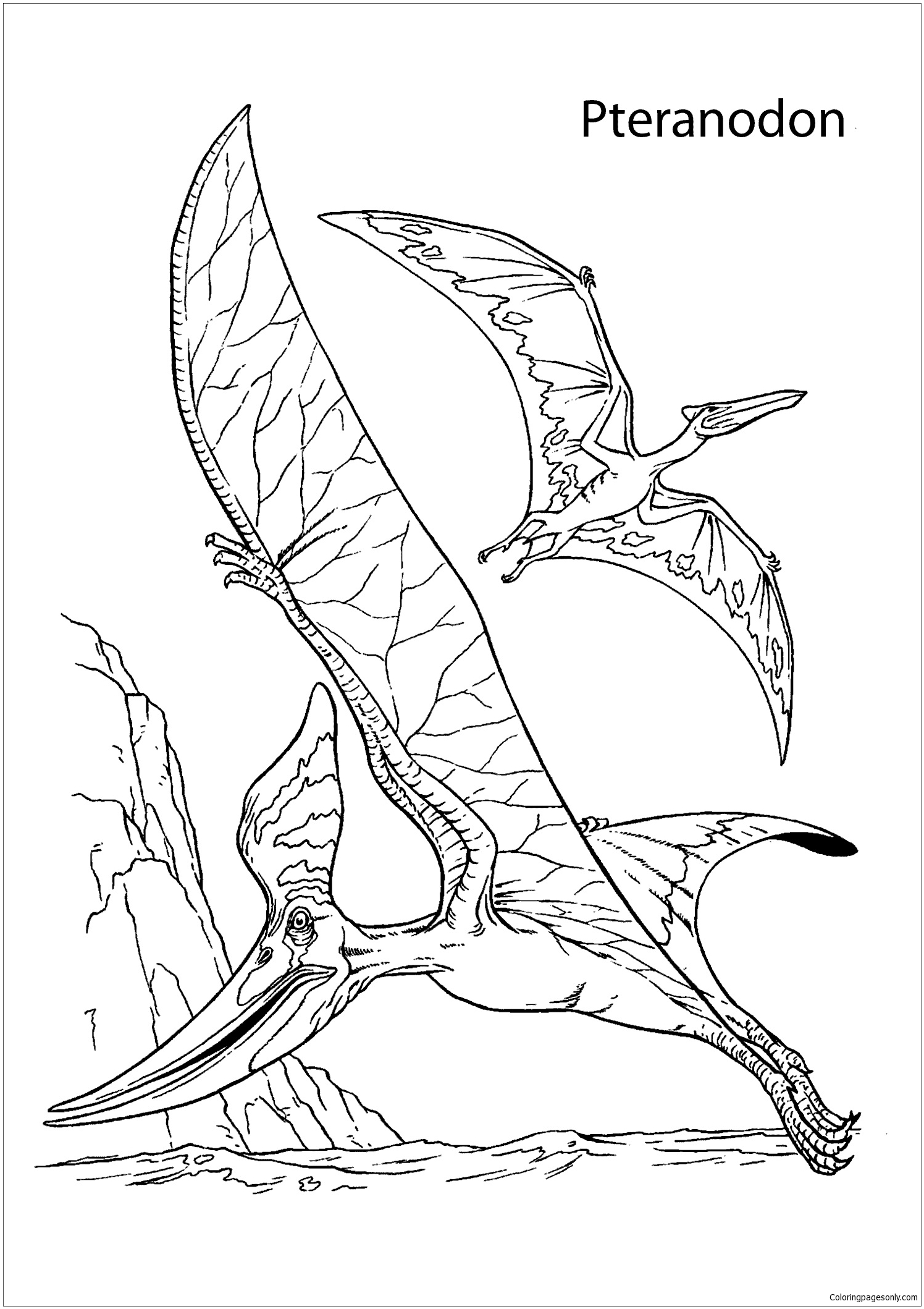 Two Pteranodons Dinosaurs Coloring Page
