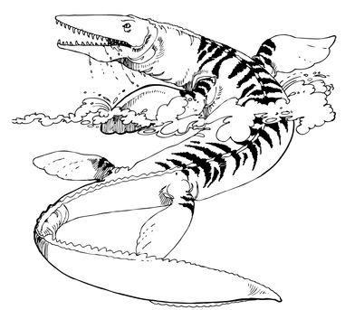 Tylosaurus Mosasaur