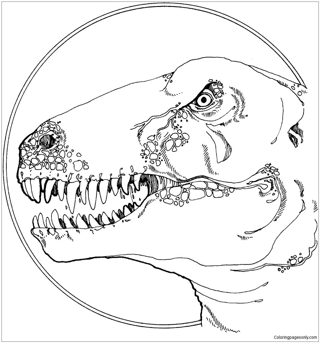 Tyrannosaurus Head Coloring Page