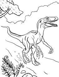 Velociraptor Dinosaur 2