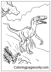 Velociraptor Dinosaur 2 Coloring Page