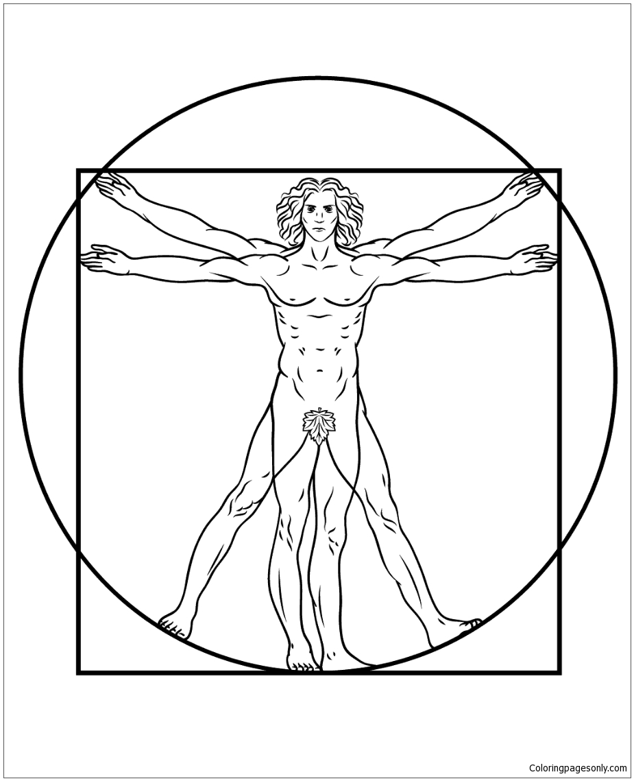 Vitruvian Man By Leonardo Da Vinci Coloring Page
