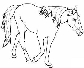 Walking Horse 1