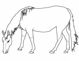 Walking Horse 2