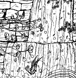Waterfall Beautiful Coloring Page