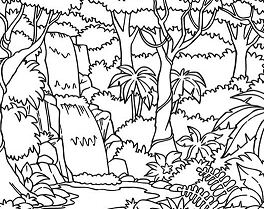 Waterfall In The Forest Coloring Page
