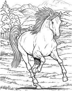 Wild Horse 2 Coloring Page