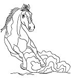 Wild Horse 4