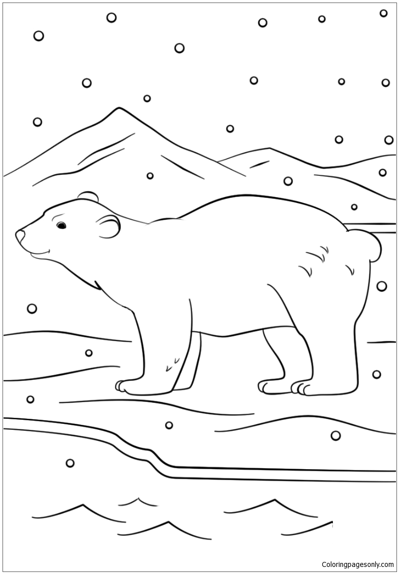 Winter Bear Coloring Page
