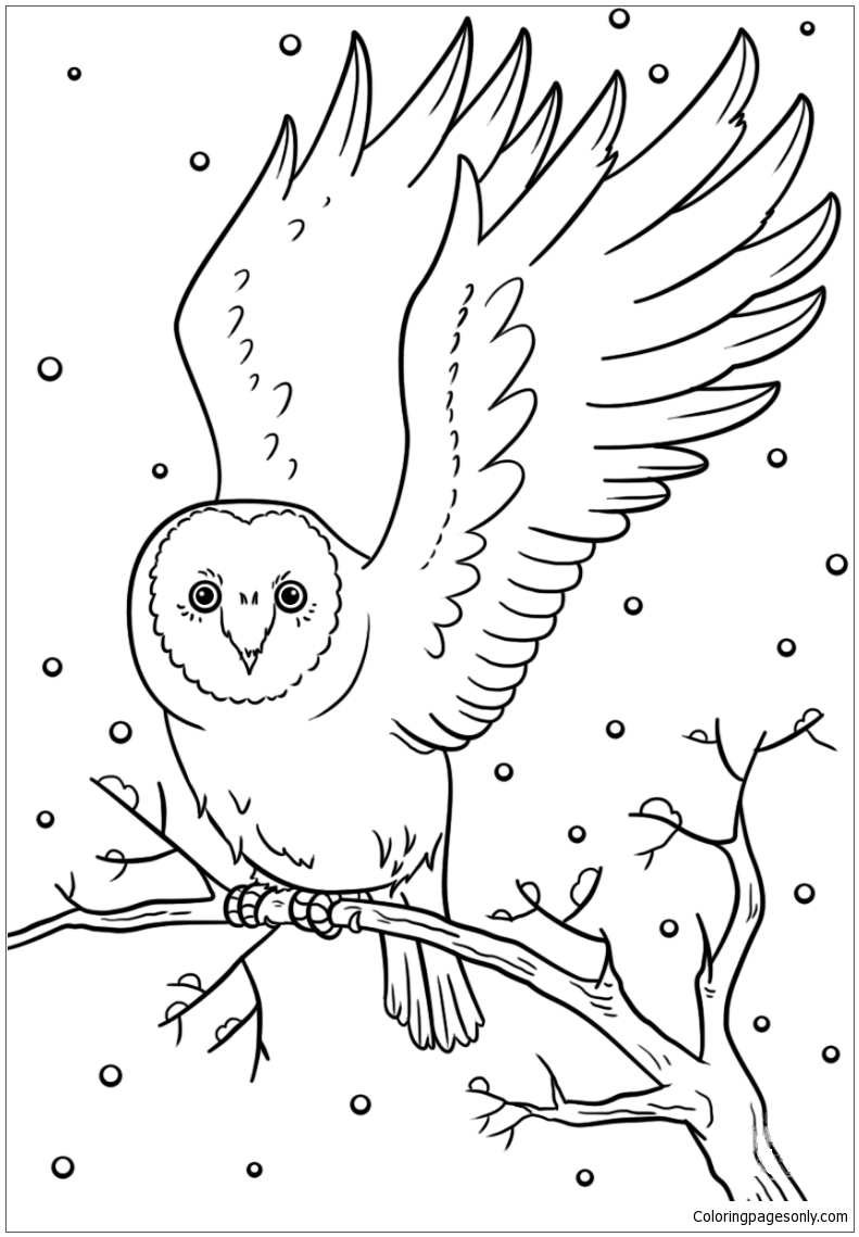 Free Printable Winter Coloring Pages For Kids | 1139x791