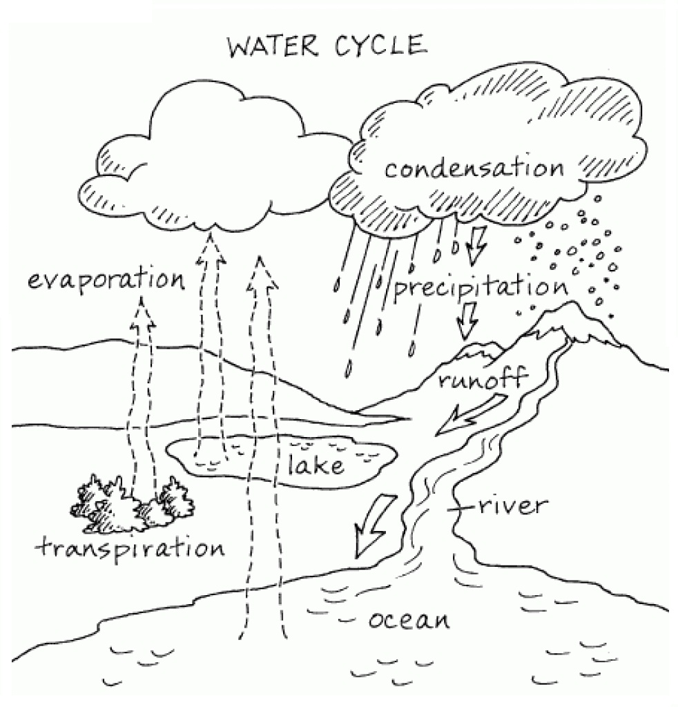 within water cycle coloring page