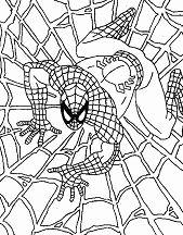 Wonderful Spiderman