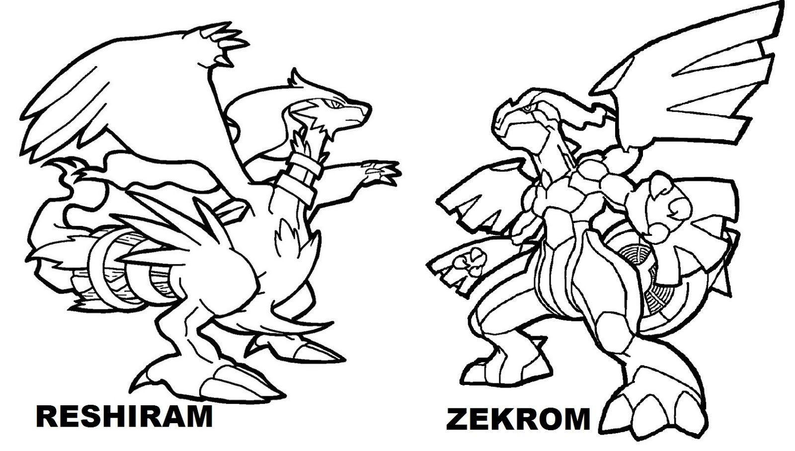 Zekrom and Reshiram