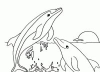 Dolphins head above the water in the sunset Coloring Page