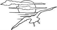 Seagull flies toward sundown Coloring Page