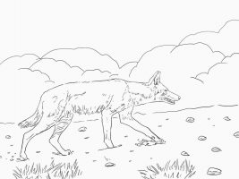 African Ethiopian Wolf Has Pointed Ears And A Slender Snout Coloring Page
