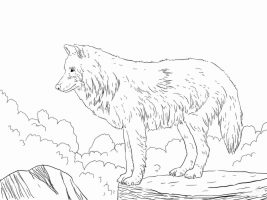 Arctic Wolf has smaller ears and shorter muzzles to retain body heat Coloring Page