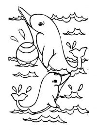 Dolphins play with ball in the sea Coloring Page