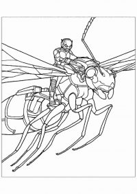 Ant-man riding the Wasp in Ant-man Movie Coloring Page