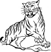 Silly tiger is roaring on ledge Coloring Page