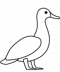 Easy cartoon duck drawing for toddlers Coloring Page