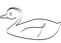 Drawing duck swimming in the pond Coloring Page