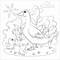 Mother duck and baby ducklings go around on the sunny day Coloring Page