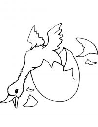 Baby duck hatching yelling Coloring Page