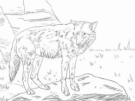 Eastern Wolf has a long, bushy, brownish tail with a black tip Coloring Page
