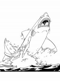 The great white shark jumps out of the water Coloring Page