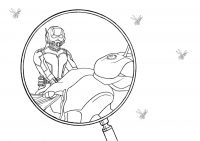 Laboratory of Ant-man through magnifying glass Coloring Page