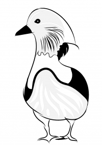 Mandarin duck has distinctive long feathers on the side of the face Coloring Page