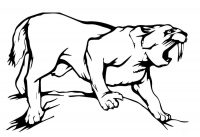 Upper canines of saber-toothed tiger were slender and fragile Coloring Page