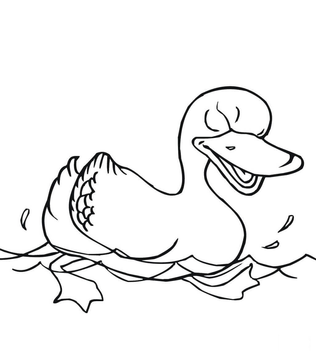 Swimming duck looks so angry Coloring Pages
